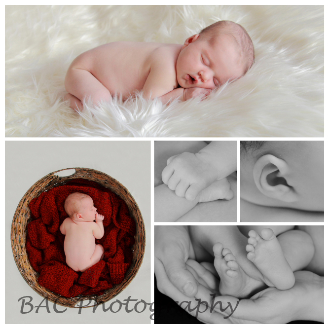 Brisbane Newborn and Family Photographer