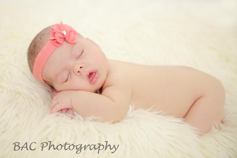 North Lakes Newborn Portrait