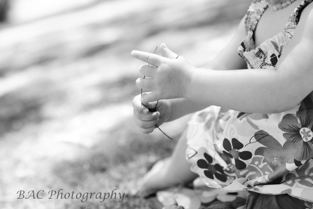 North Lakes Family Photographer