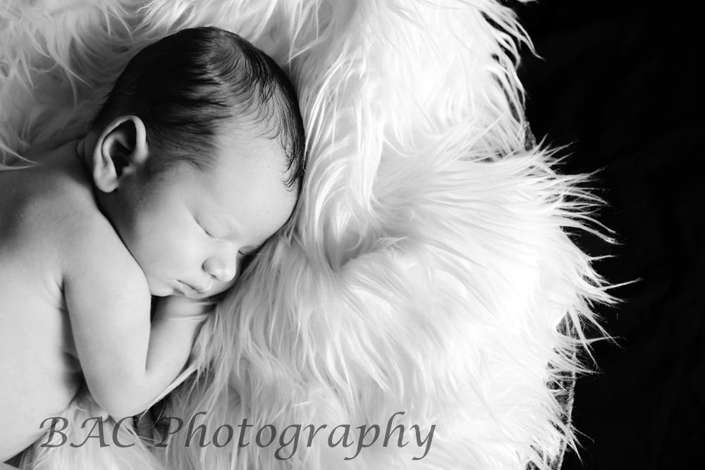 North Lakes Newborn Portrait Photographer