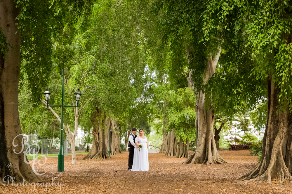 Brisbane Botanical Gardens Wedding Photographer