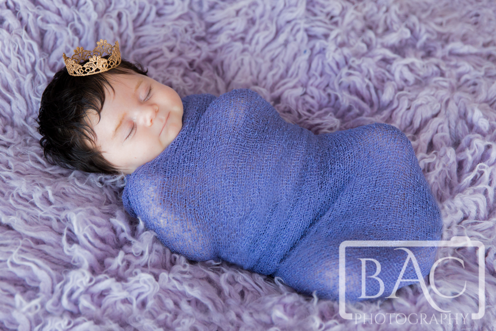 North lakes Newborn Portrait Photography