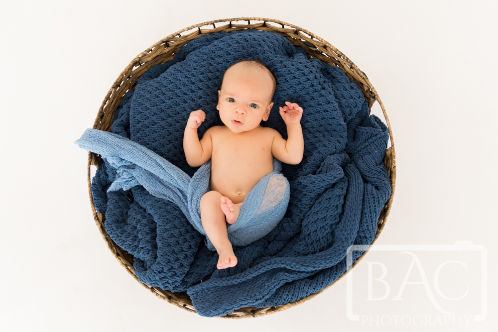 symmetrical newborn portrait of baby boy in bastket