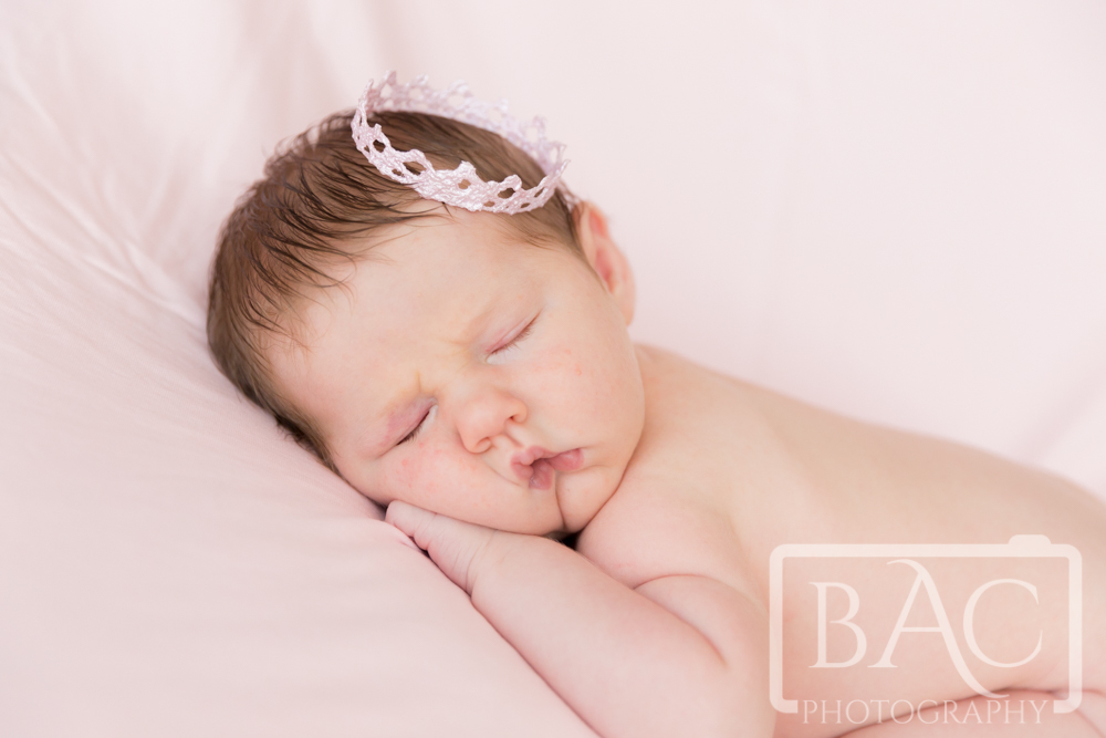 Newborn portrait of baby girl