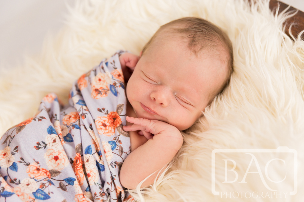 Two week old newborn portrait