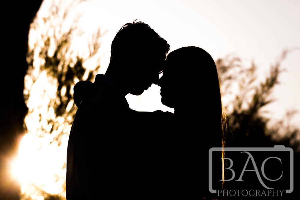 Couples portrait silhouette