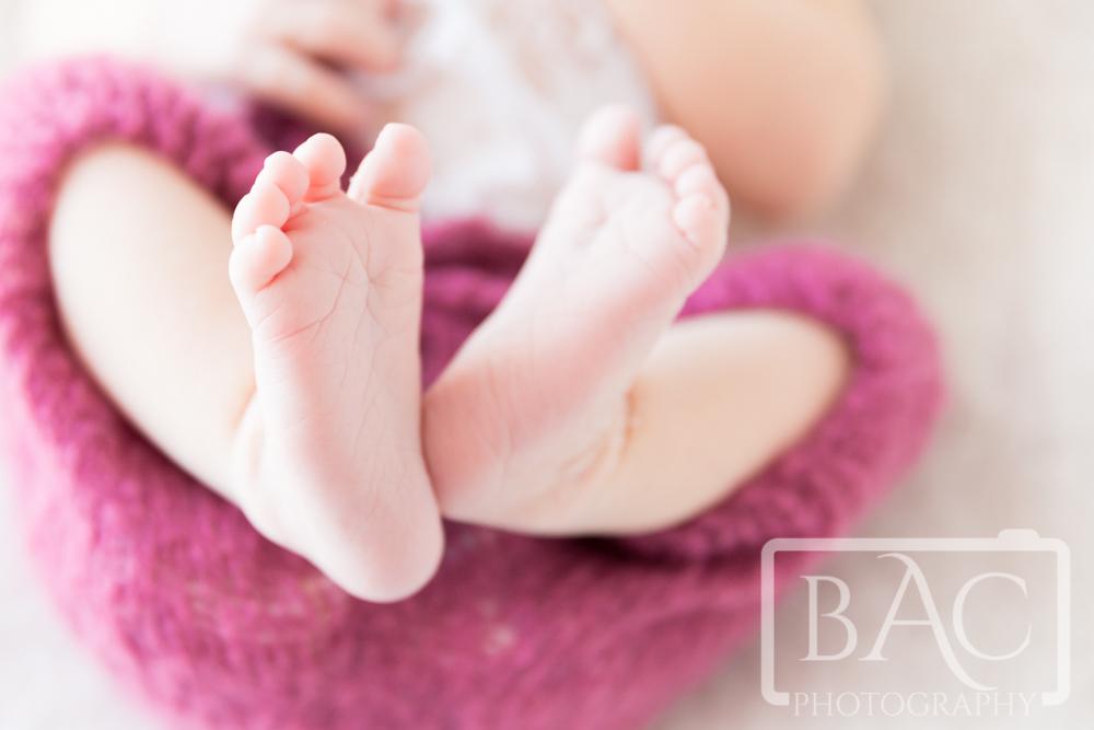 16 Day old Newborn girl portrait