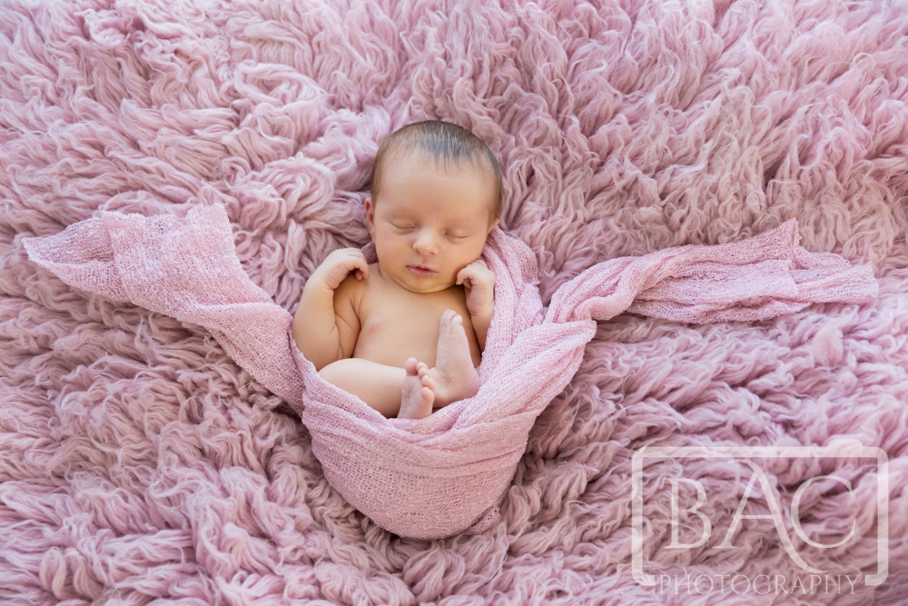 16 Day old Newborn girl portrait wrapped in pink