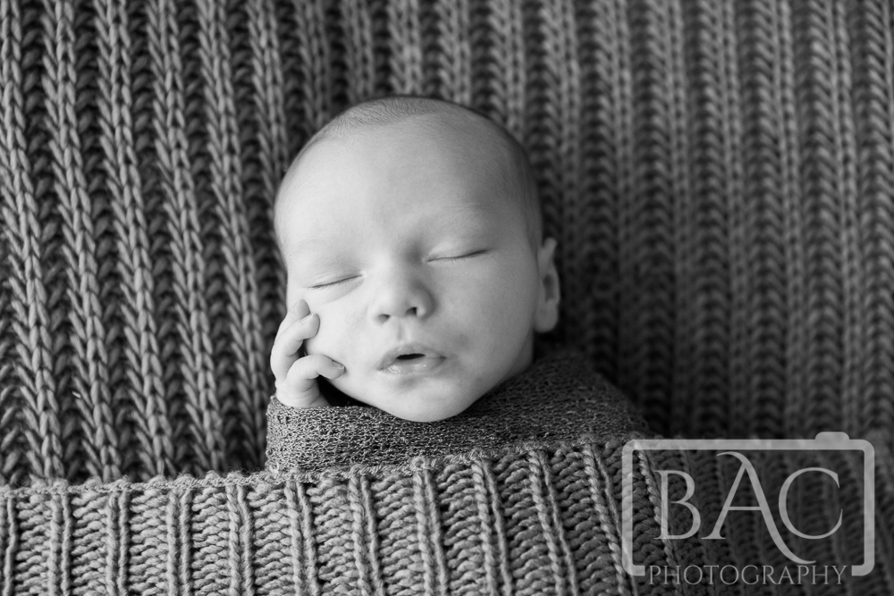 Newborn Portrait North lakes