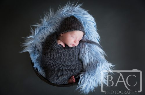 Newborn portrait in bucket