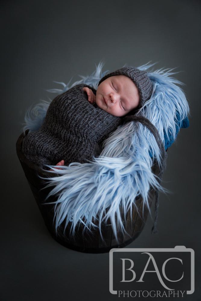 Newborn portrait in bucket