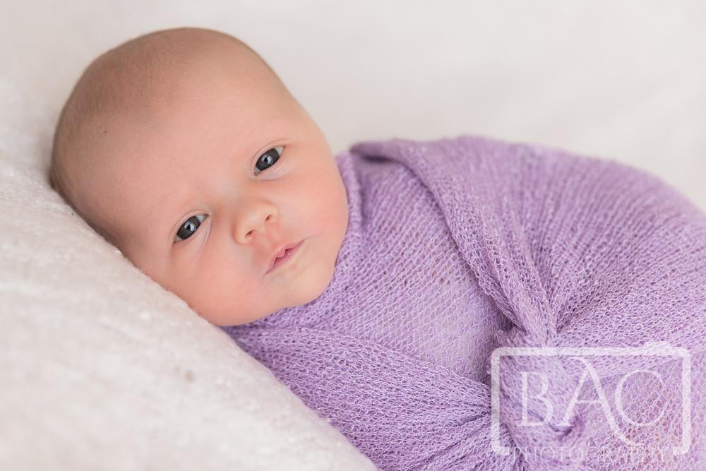 close up newborn portrait in studio