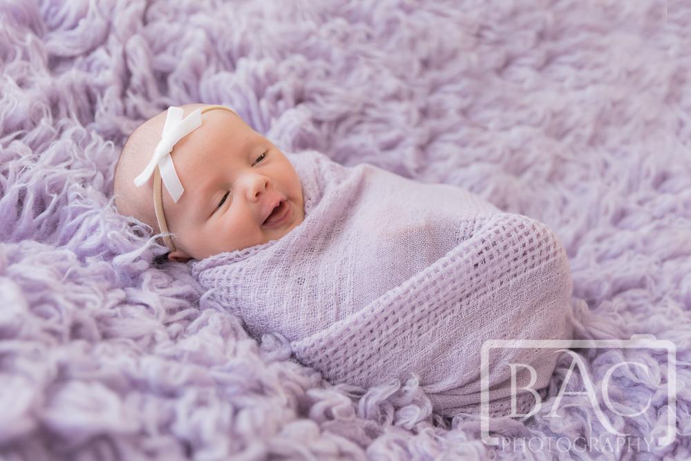 Swaddled newborn portrait in studio